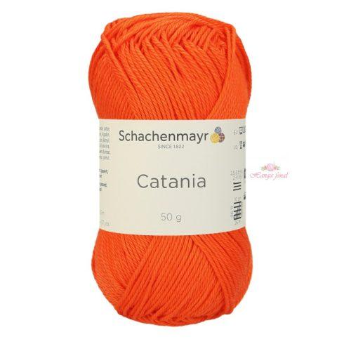 Catania 0189