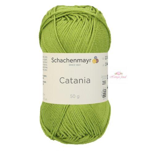 Catania 0205