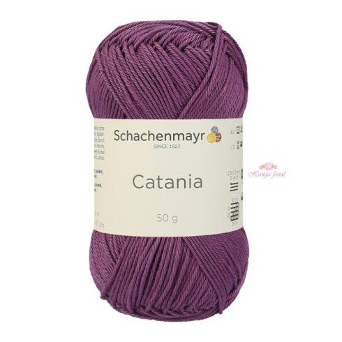 Catania 0240