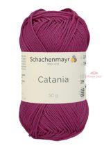 Catania 0251