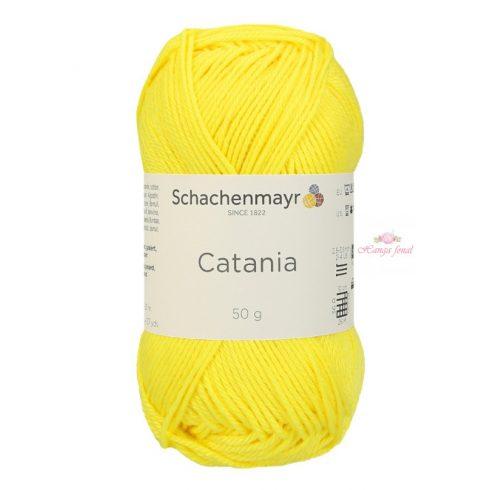 Catania 0280