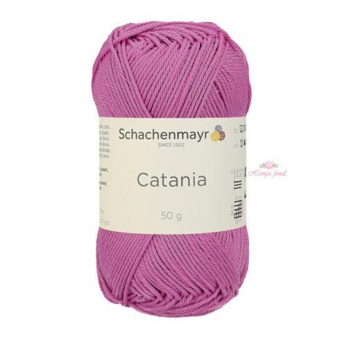 Catania 0398