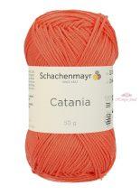Catania 0410