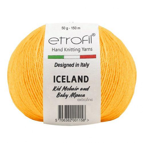 Iceland 70420 - sárga